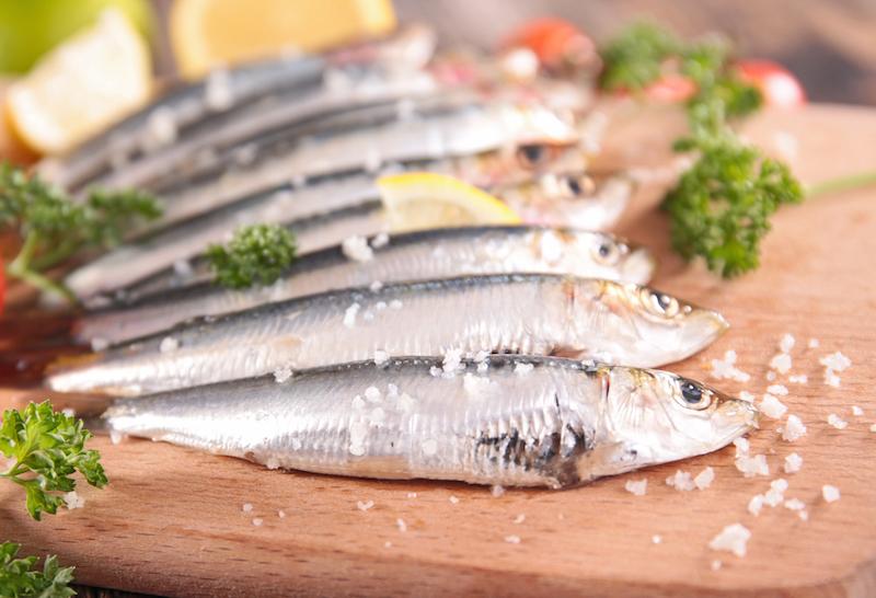 sarde-sardine
